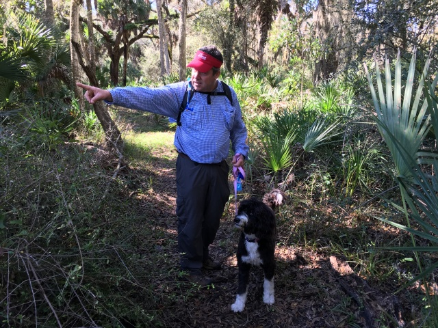 Likely a squirrel sighting along the trail at Myakka River.