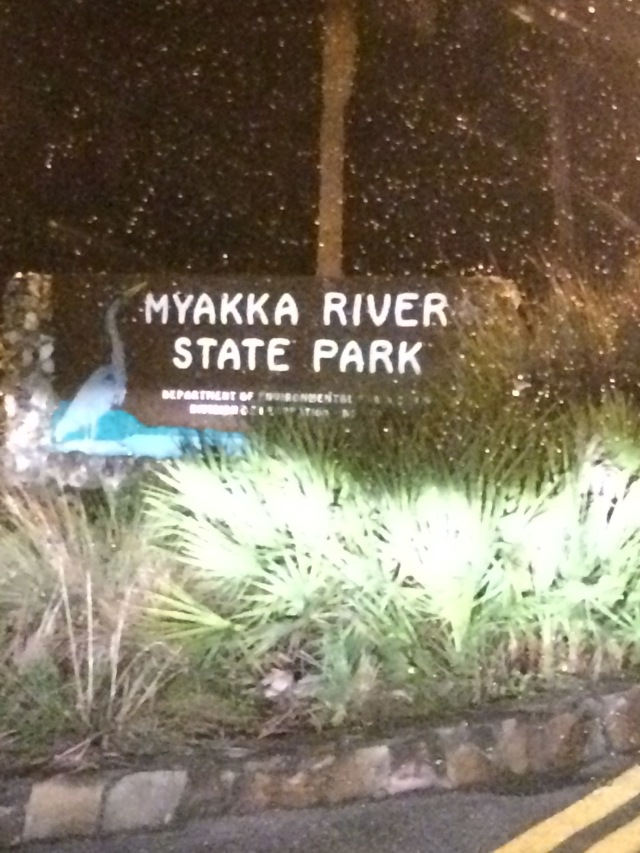 Late night arrival at Myakka River State Park.
