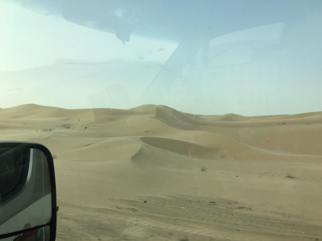 Imperial Sand Dunes.  The wind doesn't show up in these pics, but trust me- it was there!